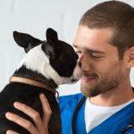 Szeretetteljes kutyaápolás